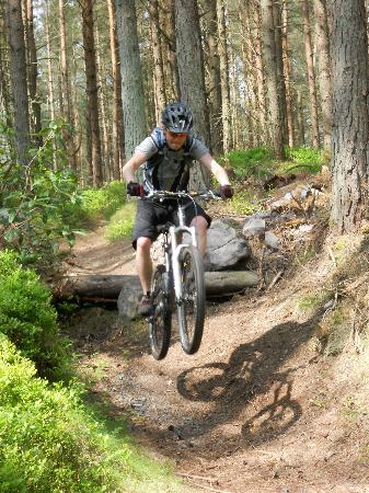 Adventure Northumberland: Mountain Biking