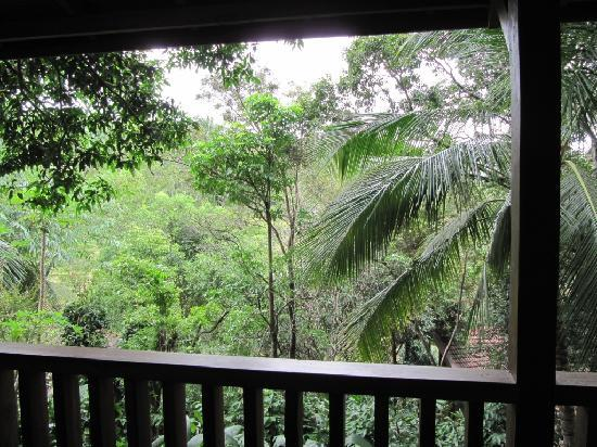 Belihuloya, Sri Lanka: View from the front of our cottage