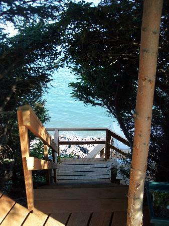 The Alaska Beach House: Stairs to the Viewing deck and Kachemak Bay