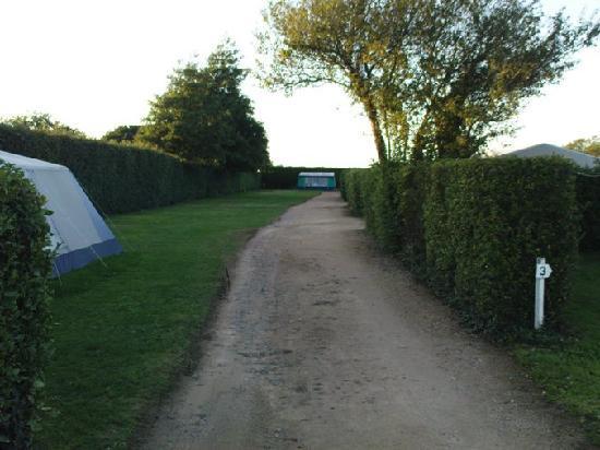 Rozel Camping Park: Rozel Campsite, en route to enlosed pitch