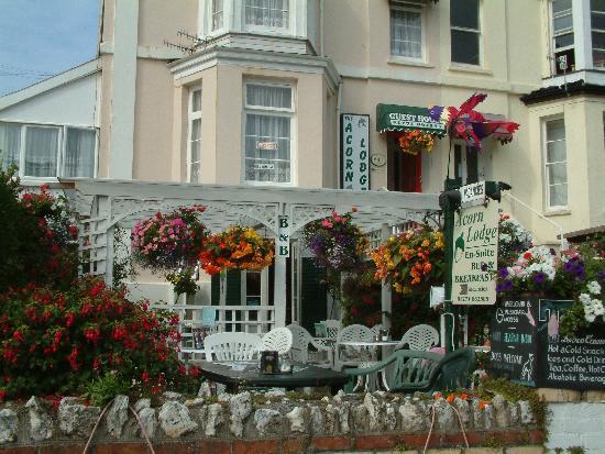Acorn Lodge: Cream Teas