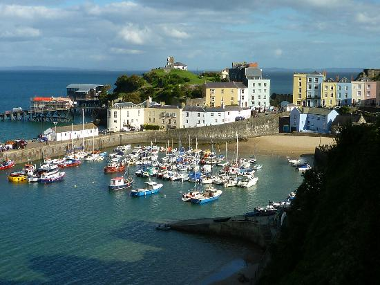 Hammonds Park: View of Tenby Harbour
