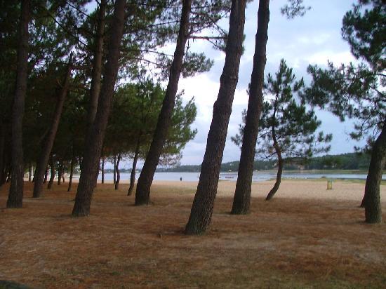 Seignosse, France : le lac d'Hossegor