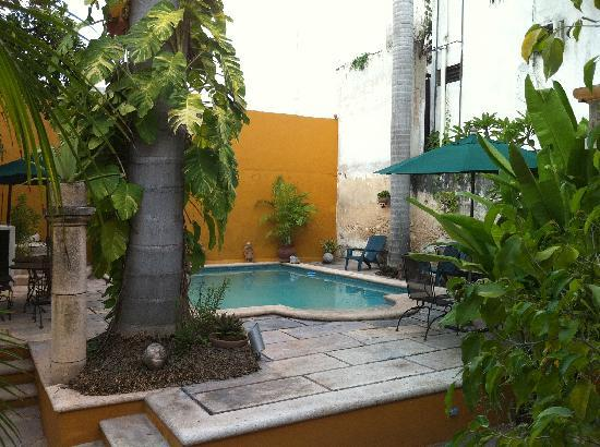 Luz En Yucatan: The Courtyard