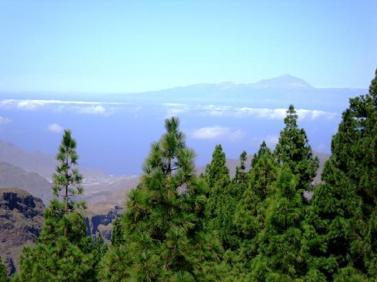 Cordial Mogan Playa: El Teide desde el Roque Nublo