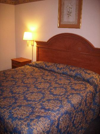 Econo Lodge Lookout Mountain: bed