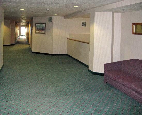 Willow Creek Inn: Safe, comfortable interior hallways.