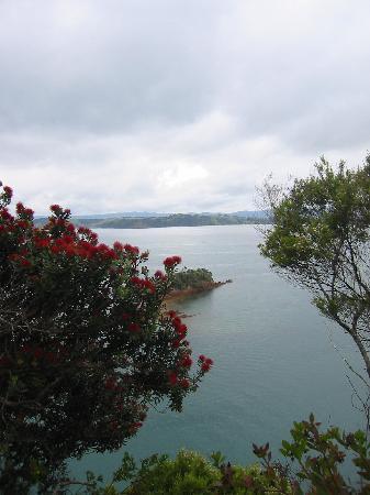 Kawau Lodge: Beaumont Point