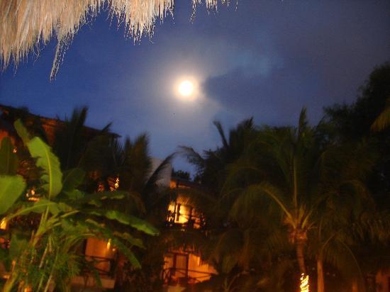 La Tortuga Hotel & Spa: que Luna