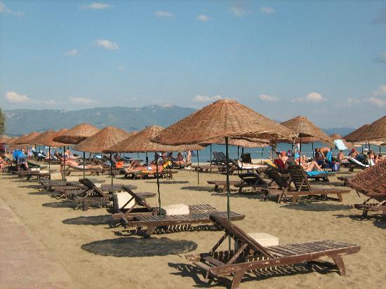 Asa Club Holiday Resort: Plage avec ponton