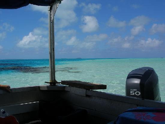 Aitutaki Glass Bottom Tour: View from the boat