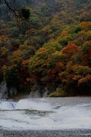 Fukiwarenotaki Fall: 紅葉の季節