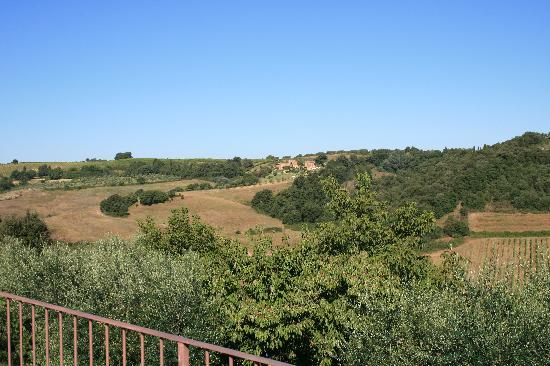Podere Sant'Alessandro : The beautiful view