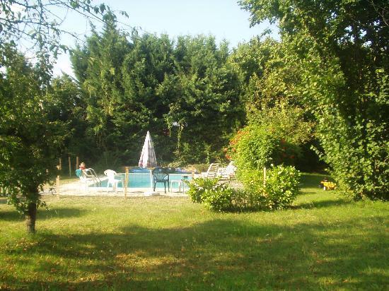 Claddagh Cottage: piscine et jardin