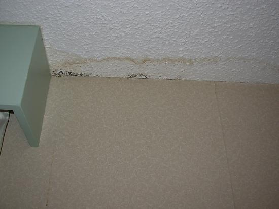 Hampton Inn Tulsa / Broken Arrow: Mold on the ceiling