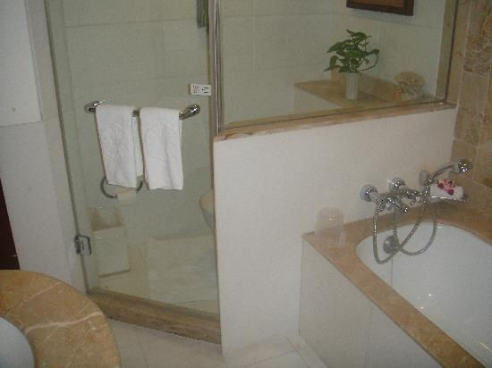 Badezimmer, Dusche & Badewanne - Bild von Taj Bengal Kolkata ...