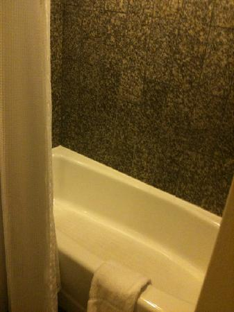 Crowne Plaza Hotel New Orleans Airport: New updated bathrooms.