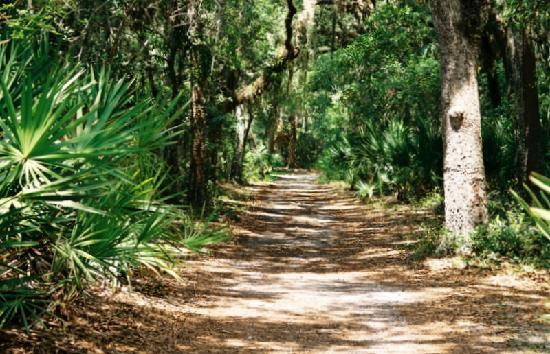 Palm Coast, FL: Hiking And Bicycling Trail