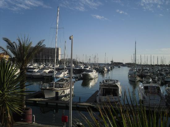 Vilamoura, Portugal: Tha Marina