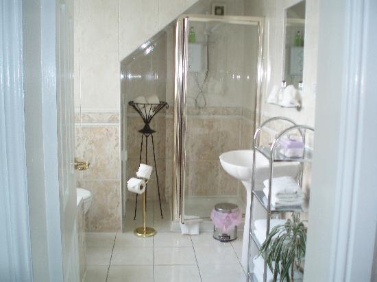 Linden Guest House: big bathroom