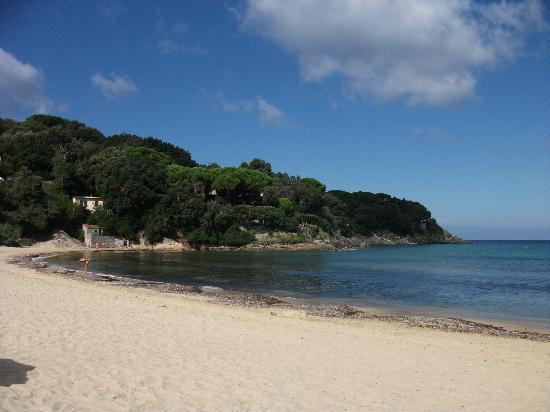 Hotel Del Golfo: coast line Procchio