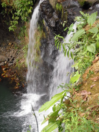 Pacific Journeys: One of the waterfalls