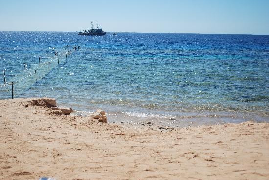 Continental Garden Reef Resort : spiaggia resort