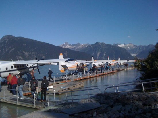 Taku Glacier Lodge & Wings Airways: Our fleet of planes