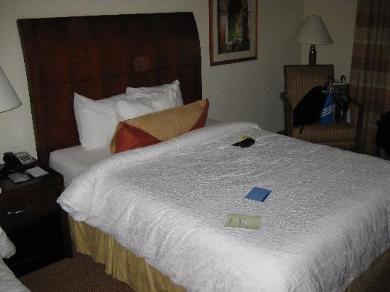 Hilton Garden Inn Myrtle Beach/Coastal Grand Mall: Zimmer