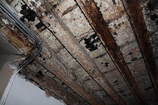 B&B Rota: Las vigas del techo carcomidas