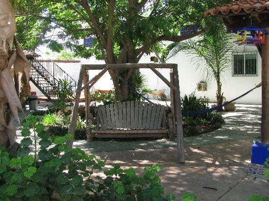 ‪‪Hacienda Paraiso de La Paz Bed and Breakfast/Inn‬: Have a moment of peace swing yourself while in paradize!‬