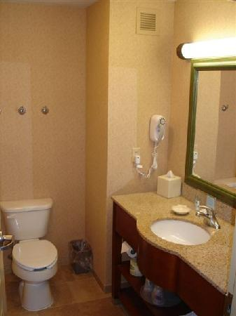 Hampton Inn Dover: Nice bathroom