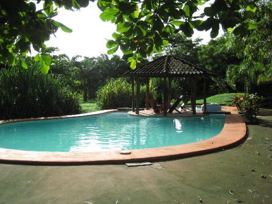 Hotel Mauna Loa: The pool