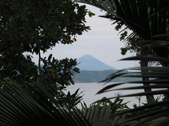 Mimpi Indah Resort: The view from the villa