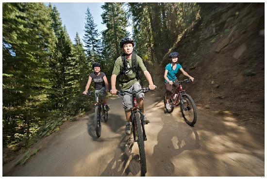 Tenaya Lodge at Yosemite: Mountain Biking