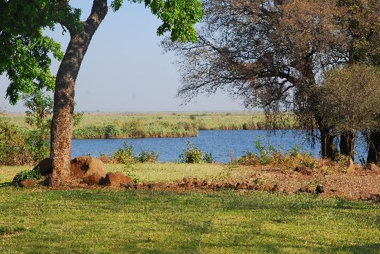 Water Lily Lodge: View to the Chobe River from the rear