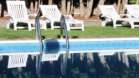 La te da B&B: Salt water pool