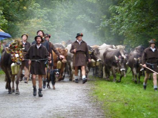Lanig Resort und Spa : The Viehscheid