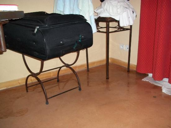 Residence Les Portes des Cevennes : diffusion de l'eau sur le sol du séjour
