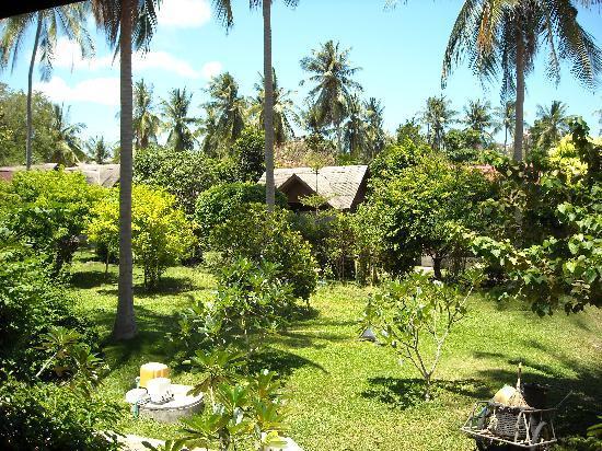 PS Thana Resort: Garten der Anlage