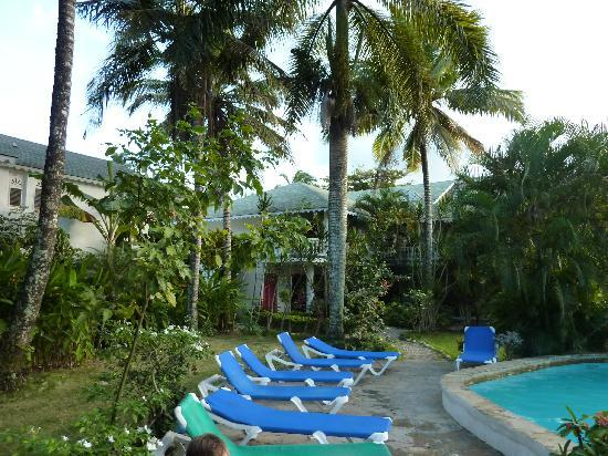 Cabarete Surfcamp: Pool Side