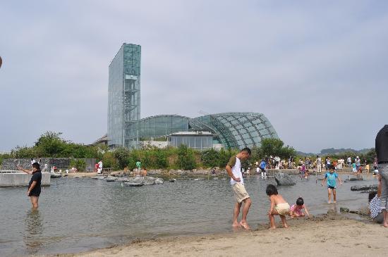 Aquamarine Fukushima : 人工の浜辺