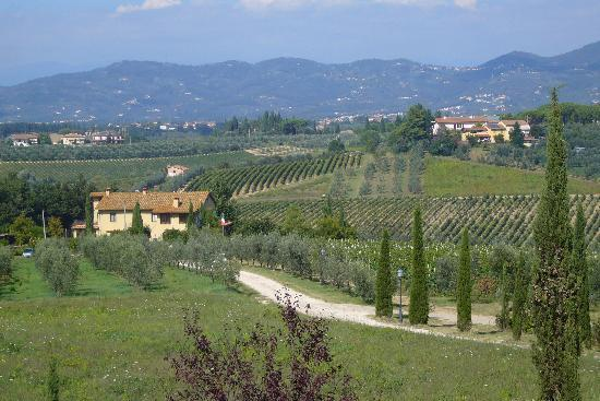 Borgo dei Lunardi: View from the bedroom