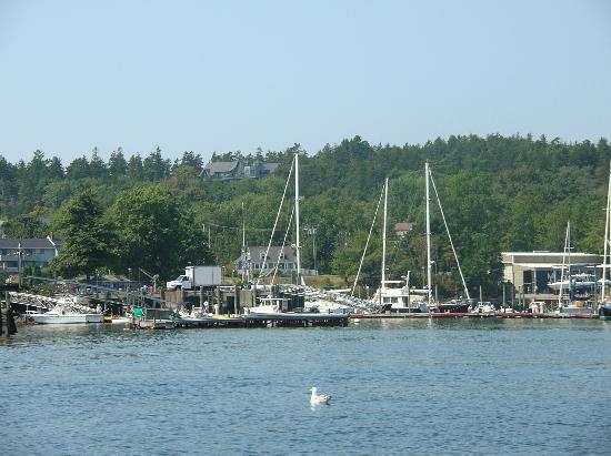Mount Desert, ME: Re-entering Northeast Harbor