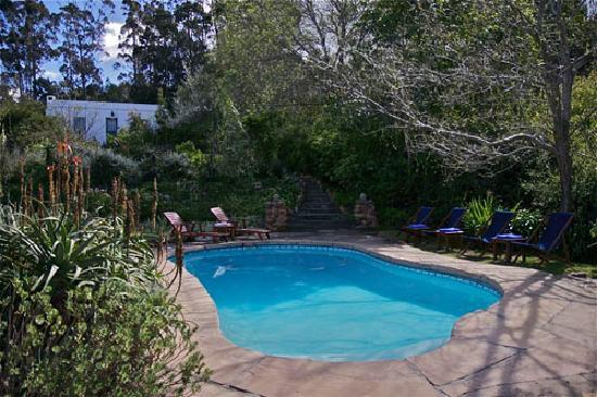 Augusta de Mist Country House: The saltwater pool