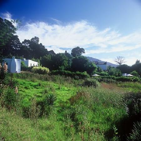 Augusta de Mist Country House: Our extensive grounds in Swellendam