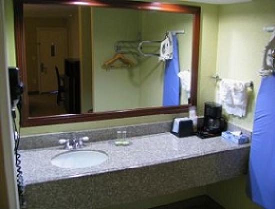 Palace Inn Tomball: Bathroom