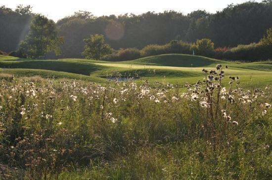 Mercure Kikuoka Golf Club: Le terrain