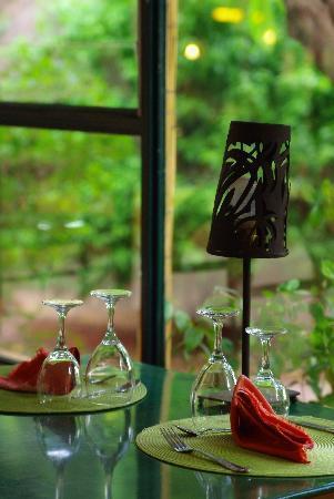Hotel les Palmiers: veranda