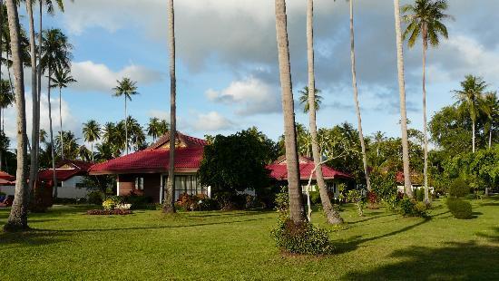 Viva Vacation Resort : Die Anlage vom Strand aus betrachtet